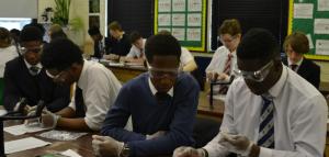 Students working on the ELISA practical